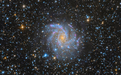 NGC6946 Full Final Cropped (1)