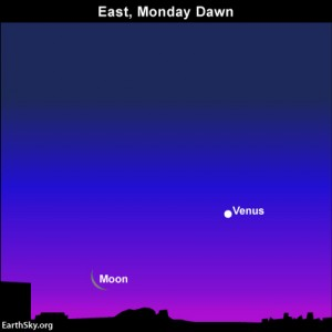 …and don't forget the morning sky, which features the dazzling planet Venus and a thin waning crescent moon on Monday, May 26.