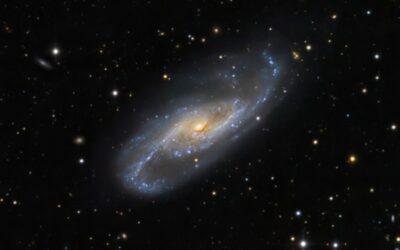 NGC4536_LRGB_web_600