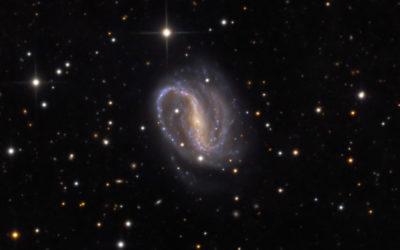 NGC7479_LRGB_web_2