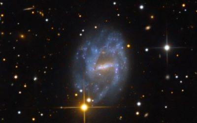 NGC7741_LRGB_web_600